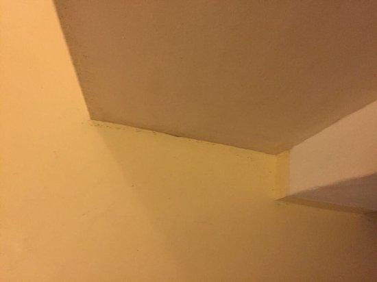 Πάρος Αγνάντι: photo1.jpg
