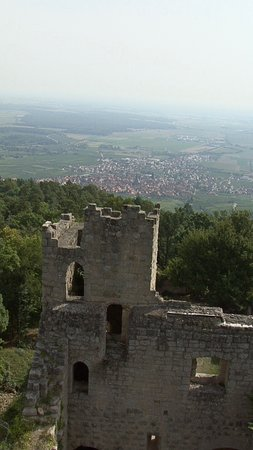 Dambach-la-Ville, France: Bernstein
