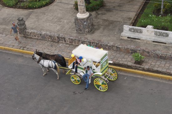 Granada, Nicaragua: Our horses and carriage await