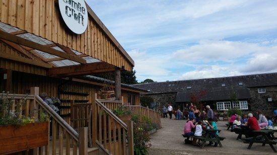 The Tea Garden at Comrie Croft: 20170827_143138_large.jpg