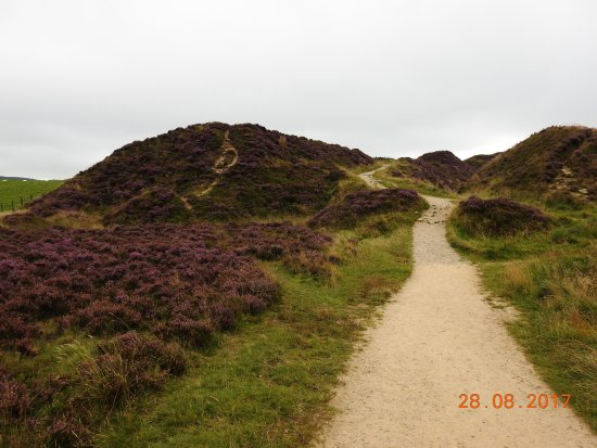 Macclesfield, UK: teggs nose country park