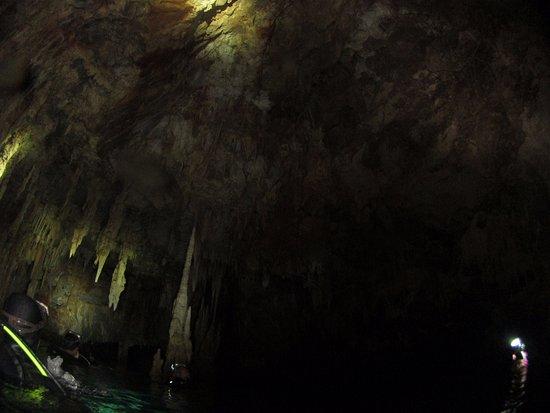 Evelin Divers: свод пещевы