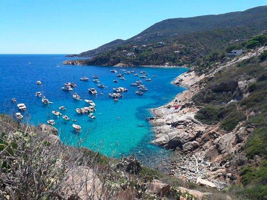 Isola Del Giglio, Italy: Acqua e vista di Cala dello Smeraldo