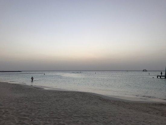 Palm Beach : photo0.jpg