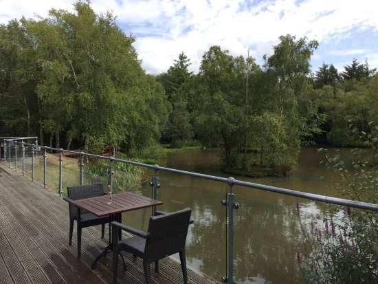 Chevin Country Park Hotel & Spa: View from decking overlooking lake