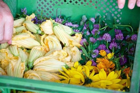 Lokalbäckerei Brotzeit: essbare Blüten, Billesberger Hof