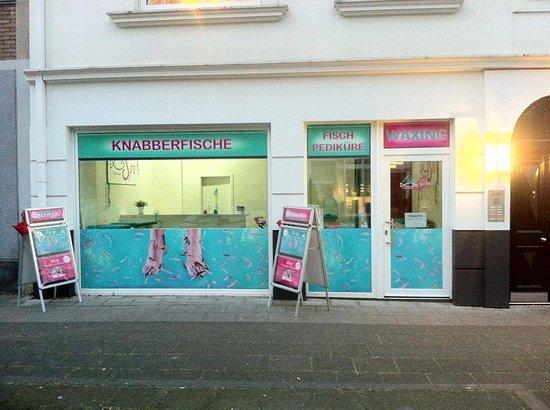 Marina Fish Spa & Waxing Köln (Knabberfische Pediküre)