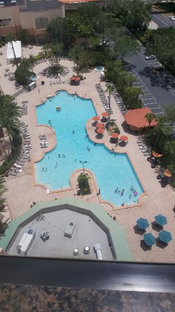 Rosen Centre Hotel: View of Pool from Room