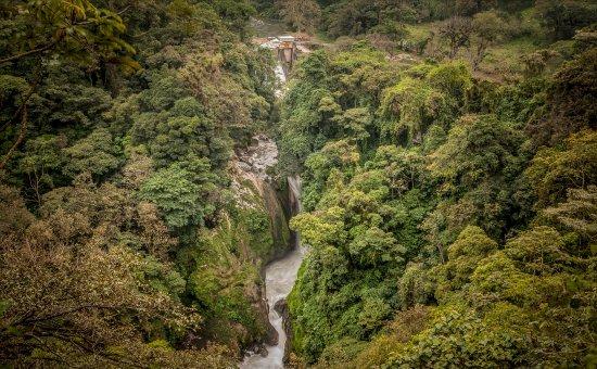 Orizaba, เม็กซิโก: Cascada del Elefante