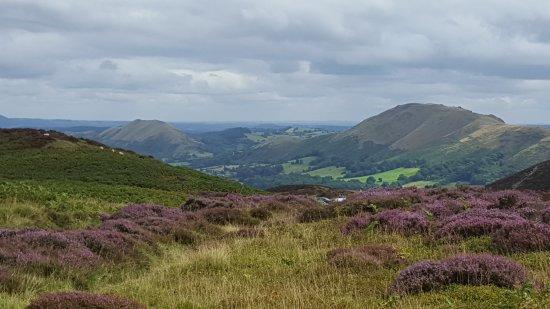 Shropshire Photo