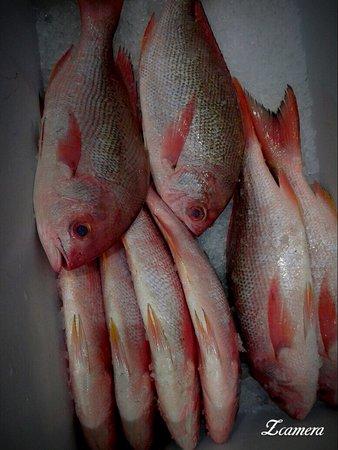 Dubai Fish Hut Restaurant