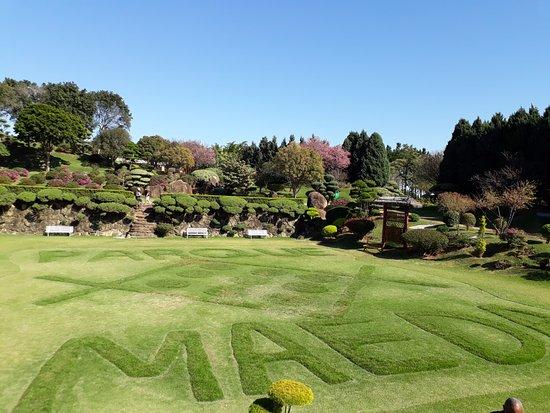Maeda Park