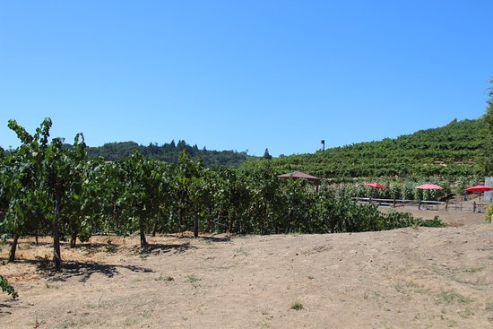 Cloverdale, CA: the grounds