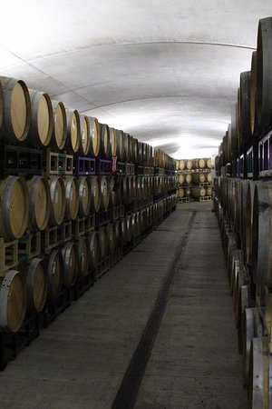 Cloverdale, Καλιφόρνια: Where all the wine is being aged.