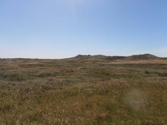 Hurup, Danmark: Nationalpark Thy