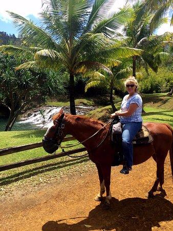 Kilauea, Havai: At Silver Falls