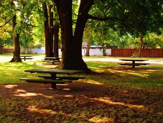 Knott Park