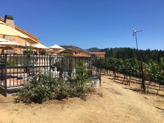 Loma Prieta Winery: photo4.jpg