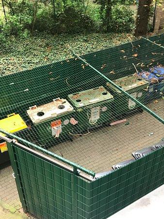 Tom's Hotel: Containers poubelles vue de la chambre(odeurs+nuisances)