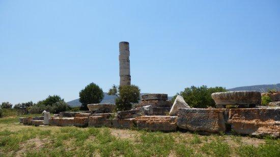 Temple of Hera: jedynka kolumna pozostała z głównej światyni
