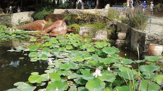 Le jardin de saint adrien servian aktuelle 2017 lohnt es sich - Jardin de saint adrien ...