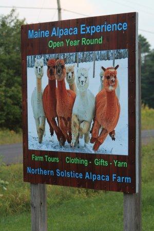 Outside Signage Picture Of Northern Solstice Alpaca Farm Unity Tripadvisor