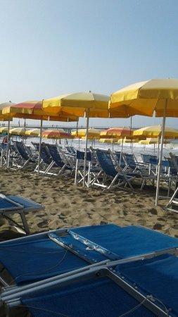 Bagno italia marina di massa italien omd men tripadvisor - Bagno milano marina di massa ...