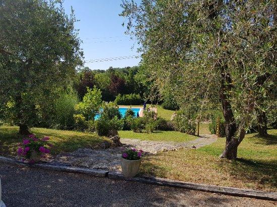 """Il Casale Del Madonnino: Ansicht in den Gartenbereich mit Pool vom Appartement """"Gorbezzolo"""""""