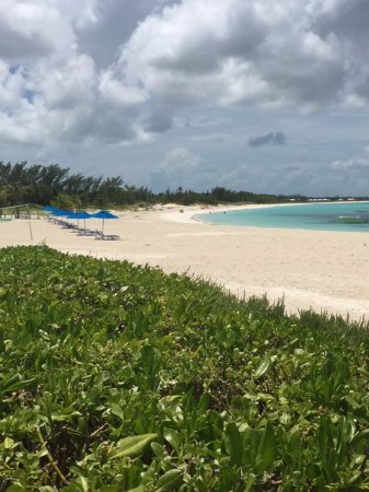 Bahama Beach Club: View down the beach from our patio is to die for