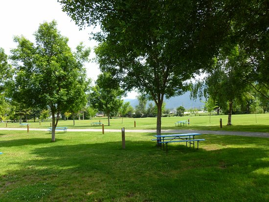 Grand Forks, Canada : Grassy tent sites with the river just beyond.