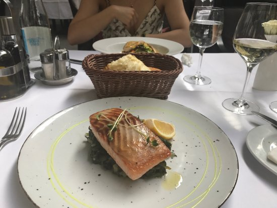 Klub knjizevnika: Grilled salmon and salad are really great. The service is also awesome