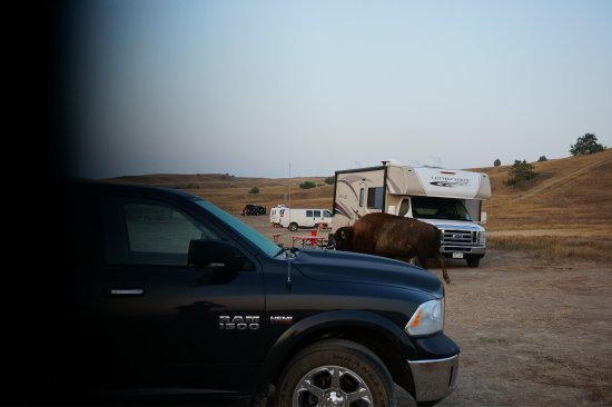 Sage Creek Campground: photo1.jpg