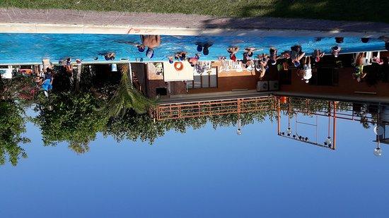Marina Palmense, Italy: Vacanza stupenda