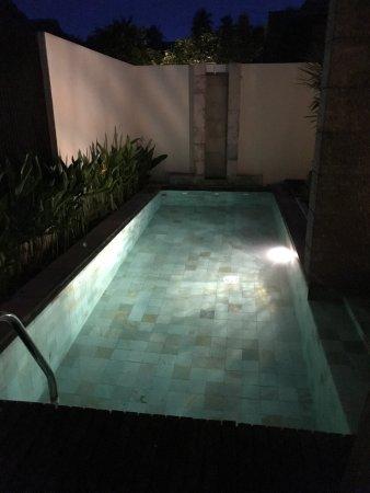 Bhu Nga Thani Resort and Spa: Room with private pool.