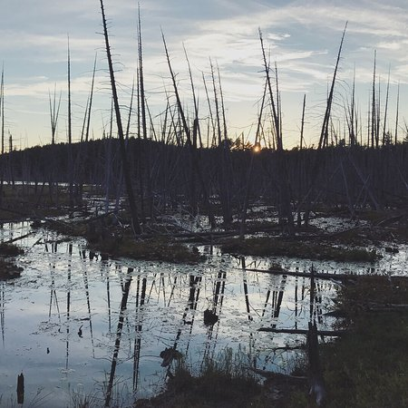 Brooksville, ME: Holbrook Island Sanctuary