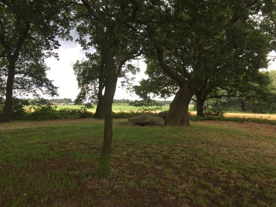 Bronneger, Nederland: photo2.jpg
