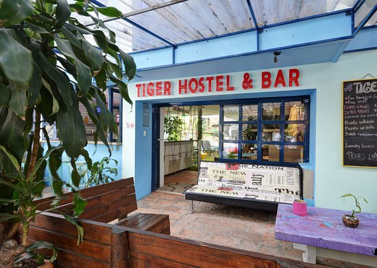 Tiger Hostal: Outside