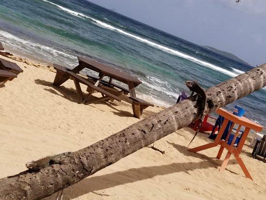 Bolongo Bay Beach Resort : 20170815_143631_large.jpg