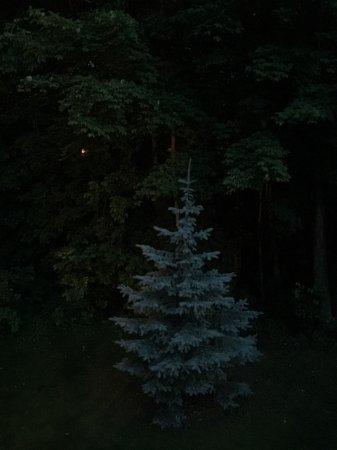 Rib Mountain Inn: Outside my window at night