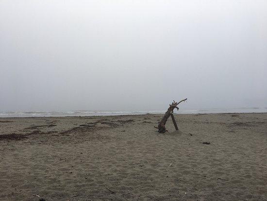 Cayucos, Californien: photo2.jpg
