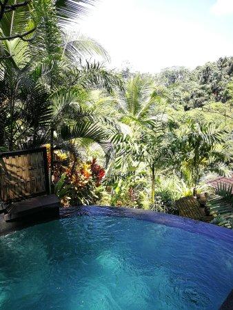 Bidadari Private Villas & Retreat : IMG-20170829-WA0007_large.jpg