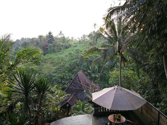 Bidadari Private Villas & Retreat : IMG-20170829-WA0000_large.jpg