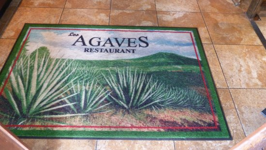Green Valley, AZ: In case you wondered what an agave was