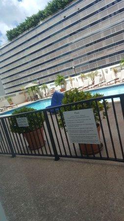 Courtyard Miami Downtown/Brickell Area: Pool area