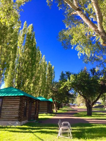 Alpine, AZ: The poplar trees in full leaf provide coolshade across the grounds.