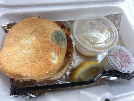 Crab Cake Hotline North Wildwood New Jersey