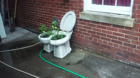 Landgraff, Virginia Occidental: Potty Planter
