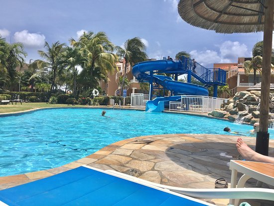 Pool picture of divi village golf and beach resort oranjestad tripadvisor - Divi village beach resort ...