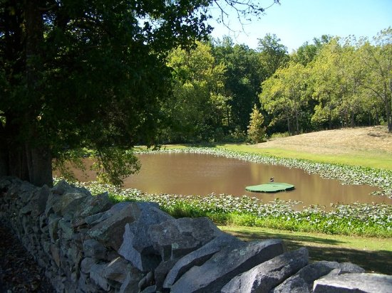 South Boston, VA: Golfpond at Berry Hill Resort & Conference Center