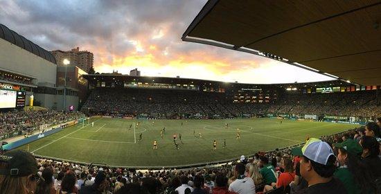 Portland Timbers: Panoramic shot